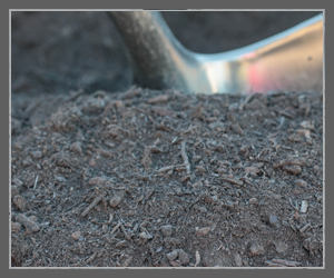 Ralph Hayes and Son Tracy - Dolomite Compost
